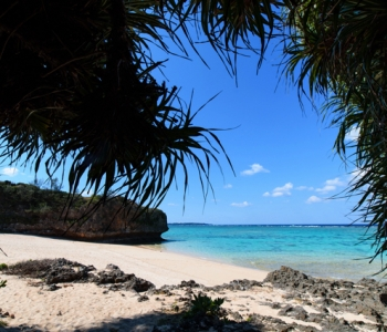 Special Picks of 4 Spectacular Beaches♪ The true appeals of Okinawa where you should not miss!