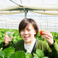 Only from January to early May! Do Strawberry-Picking in Okinawa!