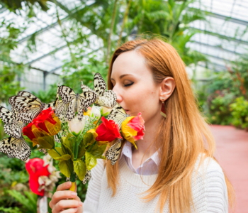 Ryugujo Butterfly Garden in Okinawa - The Best Place to Interact With Japanese Largest Butterfly with 3 Minutes' Walk  From Churaumi Aquarium!