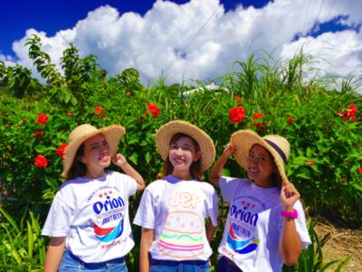 Northern Area of Okinawa Main Island【Kunigami Village】Model Course♪ Beach Hack Tour, Part 2