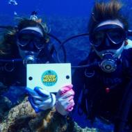 ダイビング経験ナシの私が初挑戦!沖縄の人気ダイビングスポット