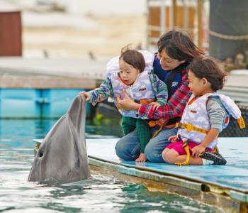 子供と楽しむ沖縄本島!子連れにおすすめのホテル5選