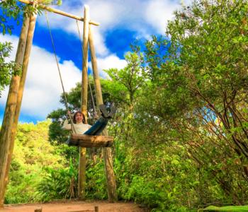 아이들 취향저격「비오스의 언덕」에서 즐길 수 있는 액티비티 5선 !