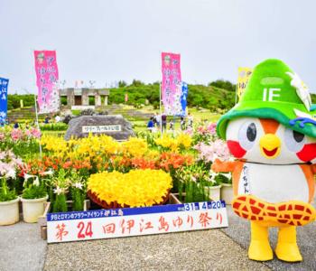 2019年 伊江島ゆり祭り初日に潜入!開花状況や本部港の臨時駐車場、シャトルバスの情報も!