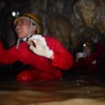 おきなわワールドの「玉泉洞」未公開エリアに潜入!沖縄で神秘発見!期間限定ツアー「南の島の洞くつ探検」