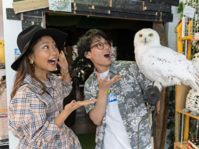 5-minute walk from Kokusaidori! A glowing Okinawa SNS spot where you can touch owls!