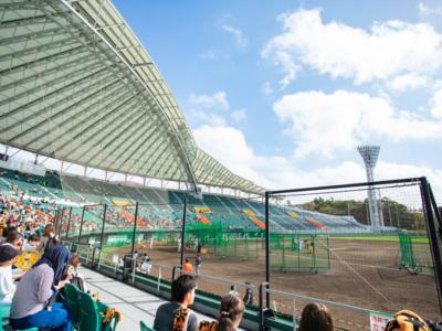 【2020年】2月中旬に新たに3球団が沖縄本島でプロ野球春季キャンプ開始!