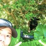 사람보다 소가 많다고?! 이시가키섬에서 페리로 30분 거리의 쿠로시마를 자전거로 일주했어요~!