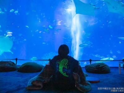 【1/12~2/28の期間限定】沖縄美ら海水族館が夜21時まで開館「美ら海ナイトアクアリウム」って?!
