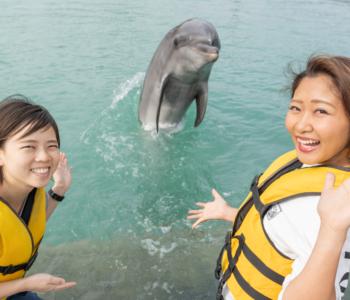 癒されたい人必見!沖縄でイルカとふれあえる!遊べる!「もとぶ元気村」へ行ってみた☆
